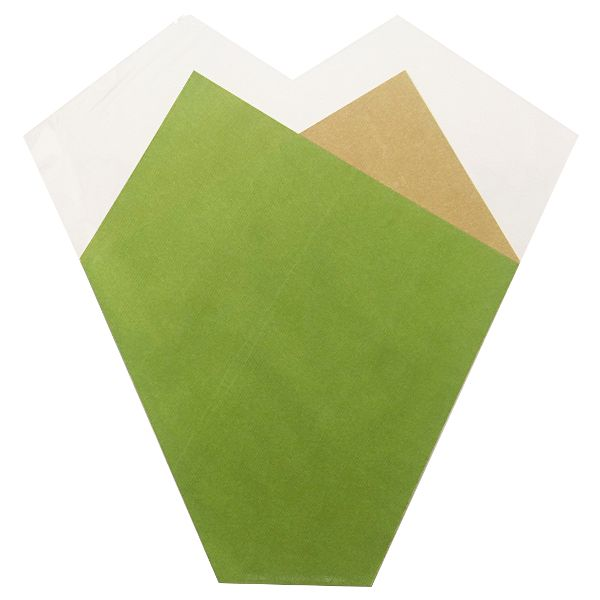 982450- SLEEVE 50 X 44 X 12CM FARM FRESH GREEN 50/PKG 1M/CS