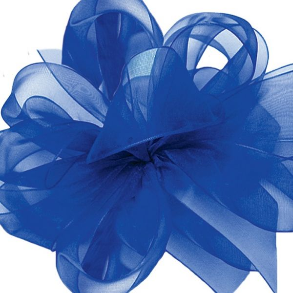 1694363-280 –  #3 X 100 YDS ROYAL BLUE ASIANA RIBBON
