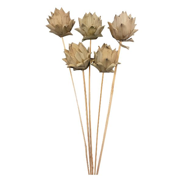 1110-  DRIED ARTICHOKE ON STEM NATURAL 5/PKG CS/25 PKG